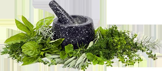 Bách thảo dược sản xuất thực phẩm chức năng có nguồn gốc từ thiên nhiên