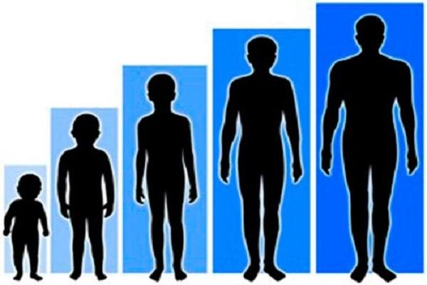 Những thói quen cải thiện chiều cao mà ít người biết đến